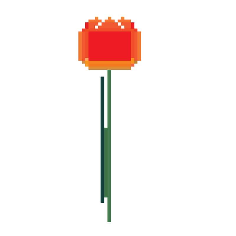 044 Fotobehang-1-Tulp